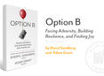 Book cover: Option B